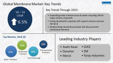 global market membrane trends