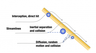 Mechanisms for particle filtration
