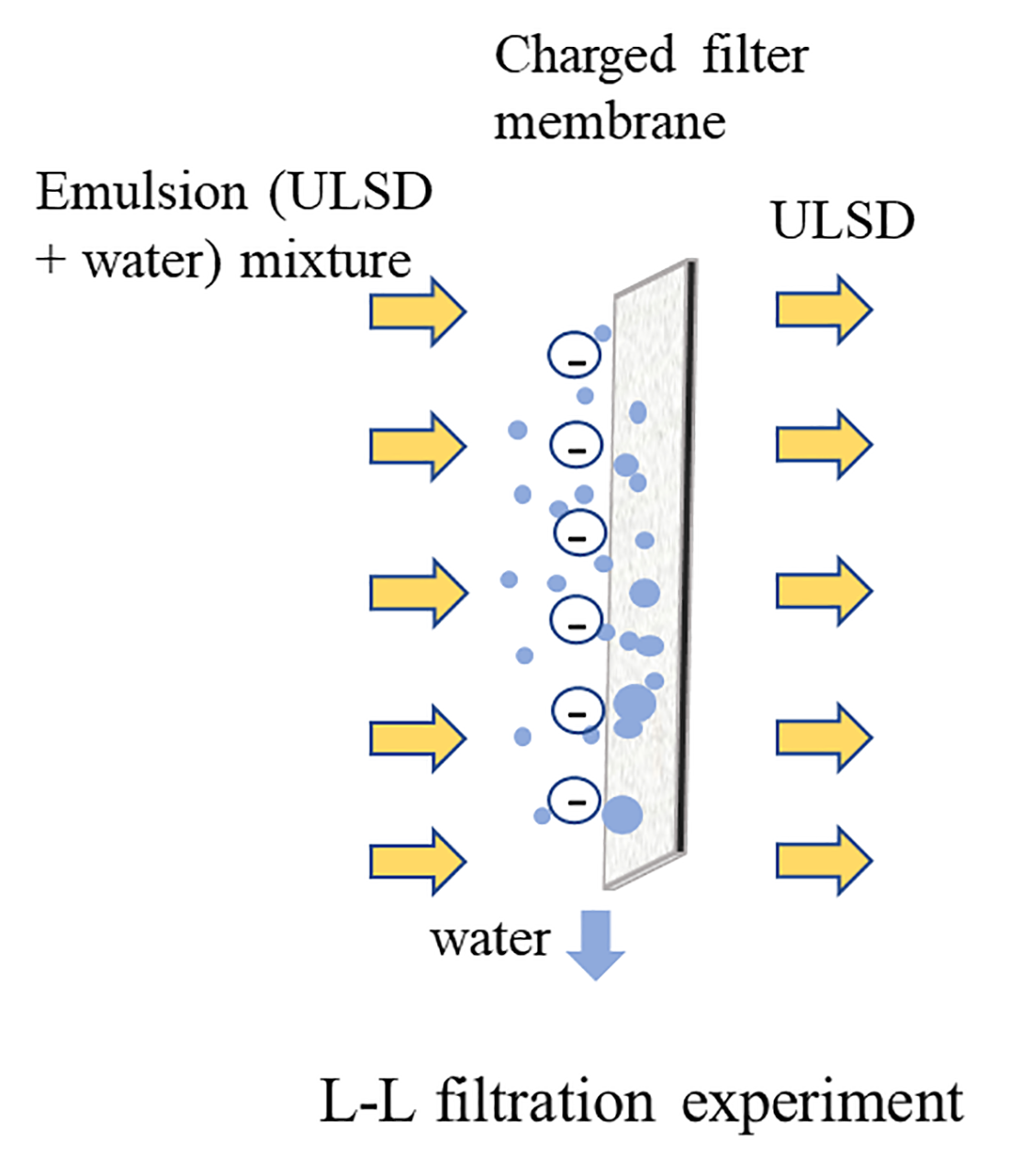 Illustration of charged filter membrane