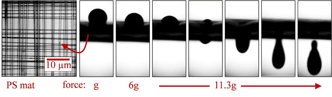 High-speed images of a ferrofluid droplet penetrating into a layer of parallel Polystyrene (PS) fibers electrospun for 3 minutes are shown in the figure.